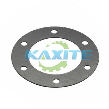 Tanged Metal Reinforced Graphite Gasket